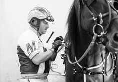 Aaron Merriman, harness racing