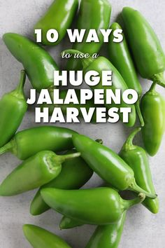 10 Ways to Use a Huge Jalapeno Pepper Harvest - Hot, hot and hot peppers - Canned Jalapenos, Growing Jalapenos, Fried Jalapenos, Jalepeno Poppers, Jalapeno Recipes, Jalapeno Ideas, Hot Pepper Recipes, Sauces, Vegetables