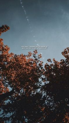 Where were you in the morning - Shawn Mendes iPhone Wallpaper Quotes from Uploaded by user #