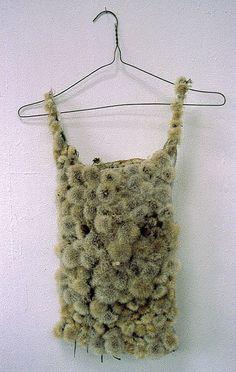 Thermal (mixed media, dandelion) by louiserichardsonart, via Flickr