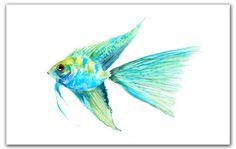 Angel fish 8x10 giclee print. Watercolor painting. blue and green fish, tropical fish .watercolor.original watercolor