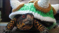 ペットの亀をかわいい「クッパ大王」に変身させる手編みのセーター「 Crochet Bowser Sweater」