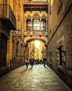 Barrio Gotico. . . . . . #barcelona #barca #catalonia #catalunia #cruises #cruise #costapacifica #costacrociere #protagonistidelmare #costa #sea #mare #holiday #vacation #spain #europe #ig_europa #life #enjoy #city #citylife #places #beautiful #instagood #barriogotico #barcelonacity #travelling #protagonistidelmare #thefullcolors #goldenlight