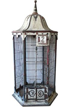 When I have my own place I want to collect bird cages and stick them in different places in my yard.