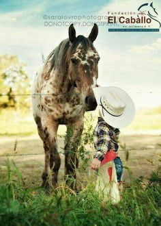 Appaloosa horse with his cute little cowboy, chaps and all!