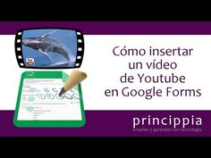Cómo insertar un vídeo de Youtube en Google Forms - YouTube
