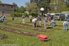 Churches can be a great place to start an urban farm.