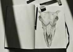 Skull sketch!