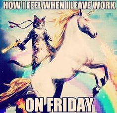 Lol #TGIF  ~ have a safe weekend everyone!