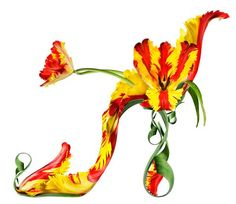 """From Michel Tcherevkoff's collection of imagined floral shoes, Shoe Fleur. He describes this one as """"Two lips meeting in Paris""""....made with Parrot tulips"""