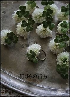 花びらの行方~blue rose~ | 布花シロツメ草など~デザインフェスタに向けて
