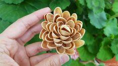 Reciclează creativ: cum să faci o floare din coji de fistic Pistachio Shells, Valentines Day, Crafts For Kids, Easter, Creative, Flowers, Christmas, Blog, Valentines Diy