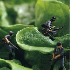 Pierre Javelle en Akiko Ida. Salad military ops