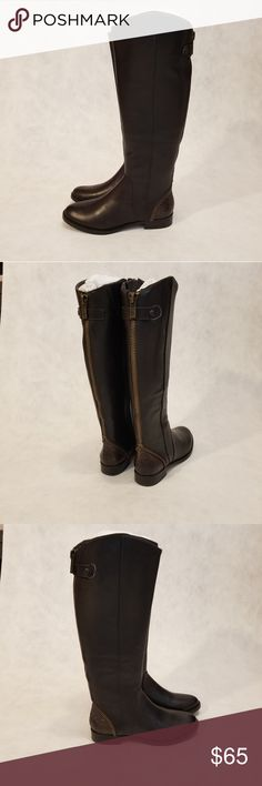 8dc838279a17a NEW Arturo Chiang Falicity tall riding boots Brand new never worn. Women s Arturo  Chiang Falicity