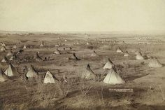 Bird's-eye view of a Lakota camp (several teepees and wagons in large field)--probably on or near Pine Ridge Reservation.