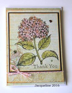 Thank you   by Jacqueline.fr