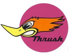 thrush mufflers 69