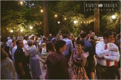California Redwood Forest Wedding - it was incredible ! Griffith Woods