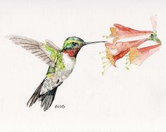 "Hummingbird Painting - Print from Original Watercolor Painting, ""Flit"", Home/Garden Decor"