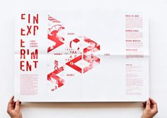 This is a very cool layout. It's made up of type, but the type is in very weird proportions and designs, so this actually looks pretty unique.