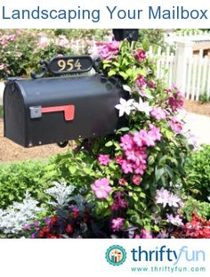 Landscaping Around Your Mailbox