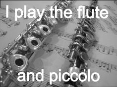 I played flute and piccolo in school and miss it.