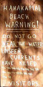 Hanakapiai Beach Warning Sign Only.jpg