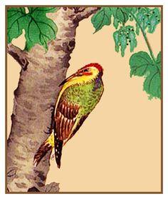 Pair of Woodpecker Birds by John James Audubon Counted Cross Stitch Pattern
