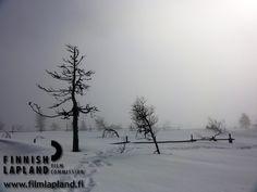 Pyhä-Luosto. photo: Pyhä-Luosto Travel ltd. #filmlapland #arcticshooting #finlandlapland Finland