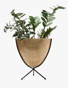 From Hip Haven, a classic bullet planter in Rattan. Featuring a steel tripod stand with powder-coated black finish and compression-molded fiberglass bowl.  • Bullet planter in Rattan • Steel tripod stand • Powder-coated black finish • Compression-mol