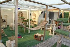 cat patio People Are Building Patios For Their Cats And Calling Them Catios, Naturally Animal Room, Hotel Gato, Cat Hotel, Cat Run, Cage Chat, Cat Jungle Gym, Outdoor Cat Enclosure, Rabbit Enclosure, Outdoor Cats
