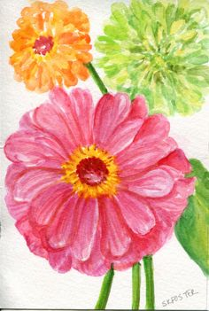 Zinnias Watercolors Paintings original Small by SharonFosterArt