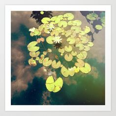 Sky Dance Art Print by Olivia Joy StClaire - $19.00, summer, water lily, reflection, sky, clouds