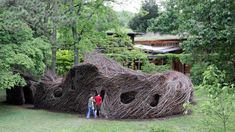 Bernheim Forests latest addition: a huge, free-form twig sculpture