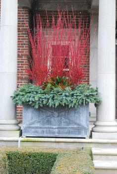 These red twig dogwood make a gorgeous display container,.. hey maybe just spray paint some branches...