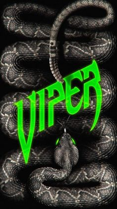 Viper Snake iPhone Wallpaper - iPhone Wallpapers