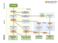 Infografía de productos, subproductos, e industrias implicadas en la elaboración de aceites de oliva Olive Oil, Food Photography, Projects To Try, Beverages, Cata, Blog, Olives, Olive Tree, Products
