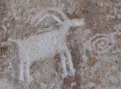 Bighorn sheep and spiral petroglyph at Fremont Indian State Park and Museum, Utah.
