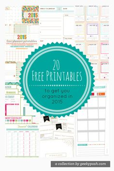 Hi everyone, hope you all had a lovely Christmas! Even though I had a 4 day long weekend, it felt like it went by way too quickly! Speaking of quickly, 2015 is just in a few days, so I thought I'd share with you some free printable to help you get organized for the new year!  As most of you know, I'm obsessed with planners and have been using my gold Kikki K planner to help me stay on top of everything. For me nothing works as well as writing out my tasks the old school way, and I love being…