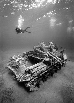 M42 Duster Anti Aircraft tanks. Photo by Alex Dawson. °