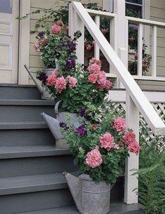 Oude zinken gieters / potten blijven altijd mooi in de tuininterieur.