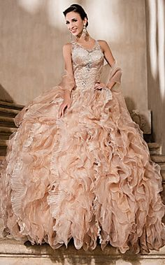 Ball Gown V-neck Cathedral Train Organza And Lace Wedding Dress