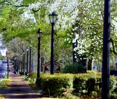 Canton Street Roswell, Ga. Absolutely love my hometown!