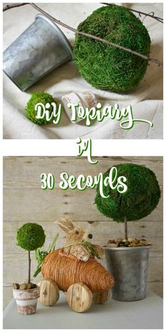 DIY Moss Topiaries in 30 Seconds - 2 Bees in a Pod