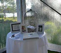 Birdcage Wishing Well
