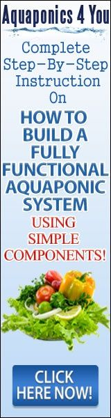 Aquaponics This incredible, potentially earth-changing new growing technique, of growing vegetation and fish and or crustainas (shrimp/ crabs etc..) in a symbiotic environment is taking the DIY world of home gardeners, fish lovers and Aquarists alike by storm. Veggies grow 2-17 times faster 100% organic