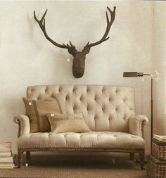 Stag. and sofa.