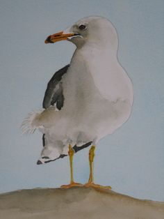 watercolor seagull 6/22/13 Sold-Going to New York