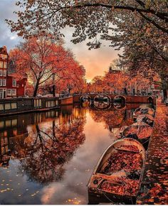 Amsterdam in the Fall Fall Images, Fall Pictures, Wallpaper Free, Autumn Scenery, Amsterdam Netherlands, Amsterdam Map, Cold Day, Tourism, Dubai