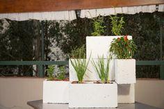 Arquiteta e paisagista mostra todo o passo a passo dá dicas para cultivar temperos em casa.